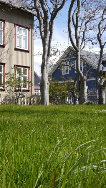 Reykjavikv101