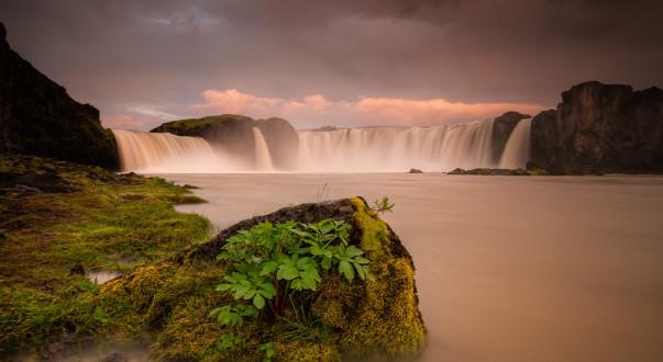 islande actus juin 2014