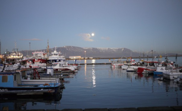 vieux port de reykjavik