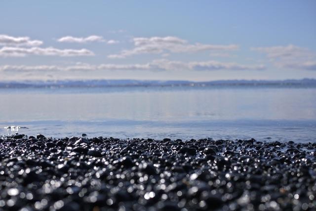 plage reykjavik